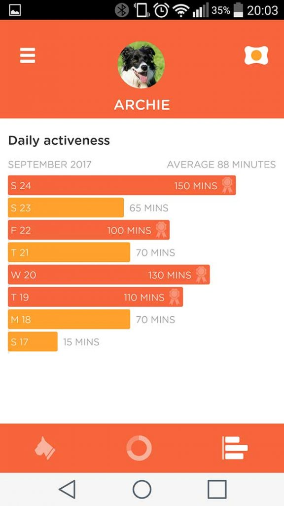 PitPat Daily Activeness